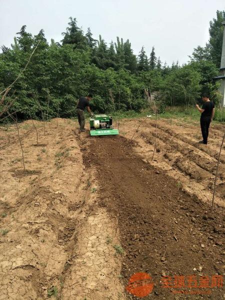于洪区小型履带式旋耕机使用方法