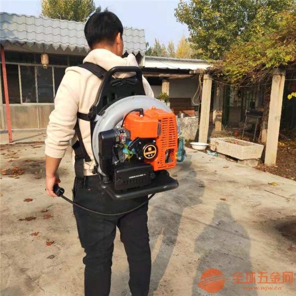 淄博道路大棚吹雪机 沙石路面清理吹风机多少钱一台