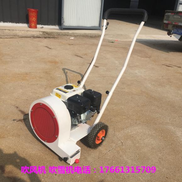 武威大棚专用吹雪机/工程清理吹雪机