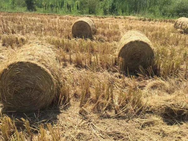 玉林秸秆自动捡拾打捆机 出厂价