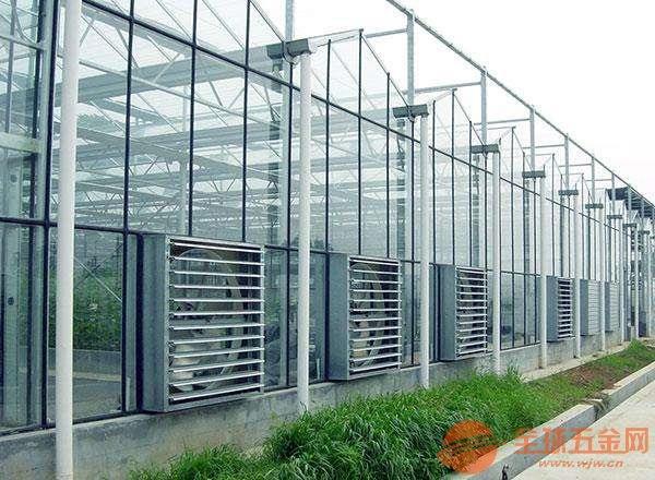 浙江農業大棚管理制度種植棚