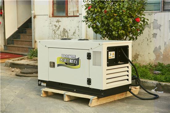 12kw水小型柴油發電機活動款