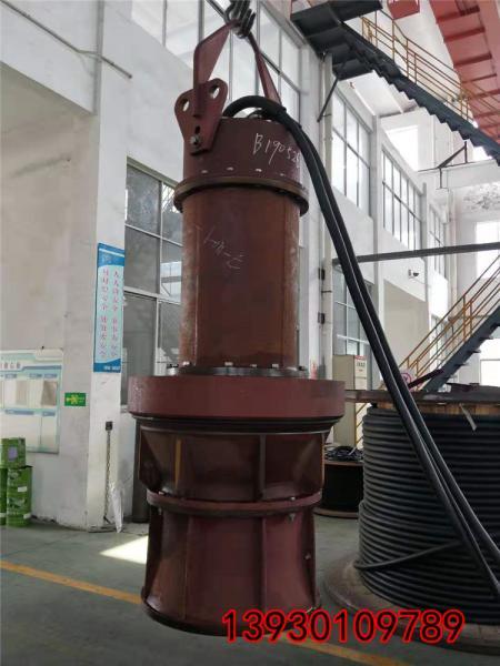 500QZB-50J鱼池轴流泵常见问题以及检修内容