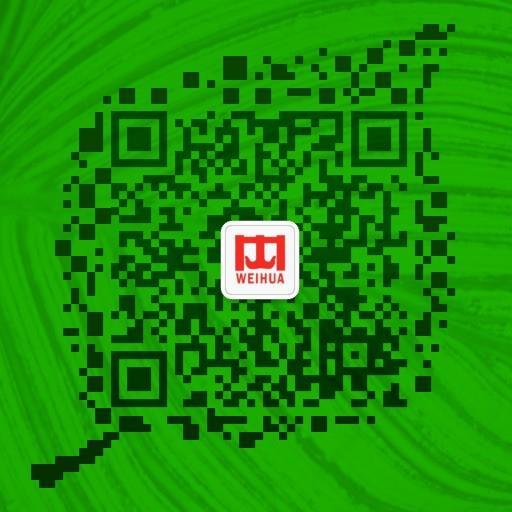 【卫华集团】2吨6米欧式电动葫芦新产品