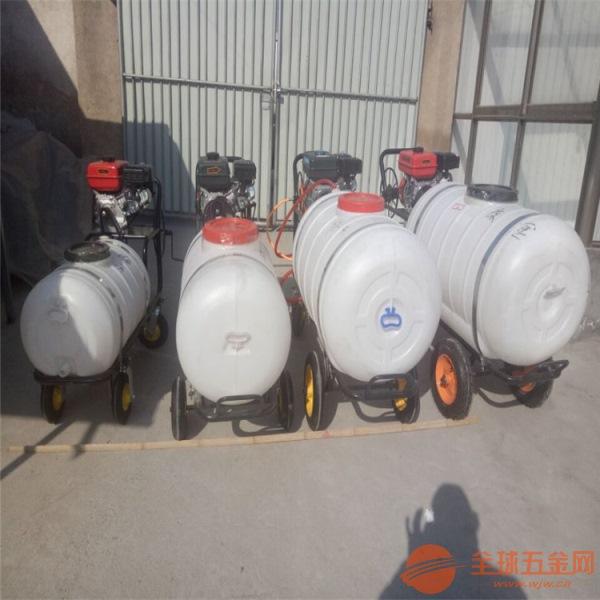 宜昌高压拉管汽油喷雾器 手推式喷雾器厂家
