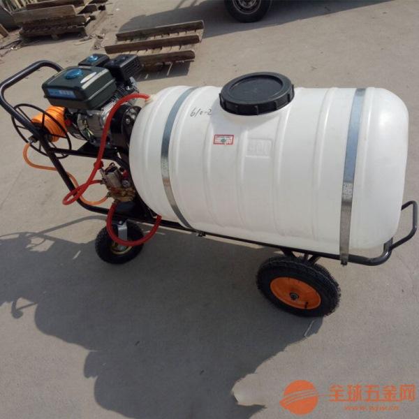 扬州防疫消毒喷雾器实用方便打药机