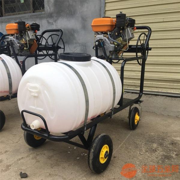 昆明汽油手推式打药机 厂家直销汽油喷雾器