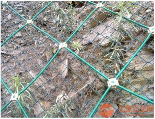 边坡落石防护网/柳州厂家直销边坡落石防护网