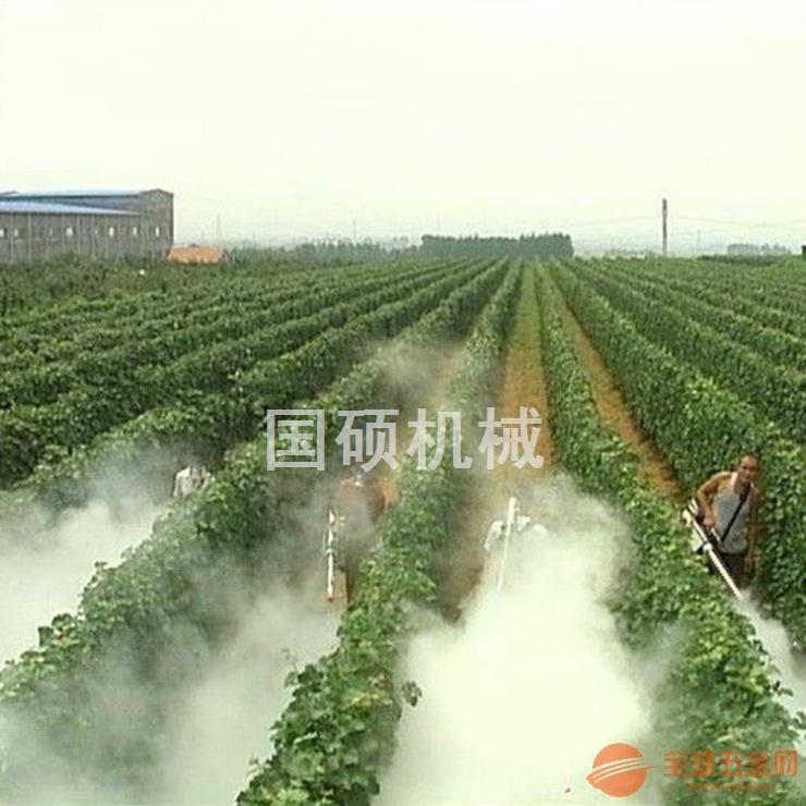 防疫消毒弥雾机消毒防疫手提式喷雾弥雾机