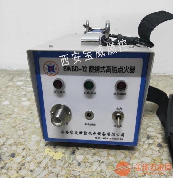 垃圾发电厂BWGD-20高能点火器 自动点火控制器