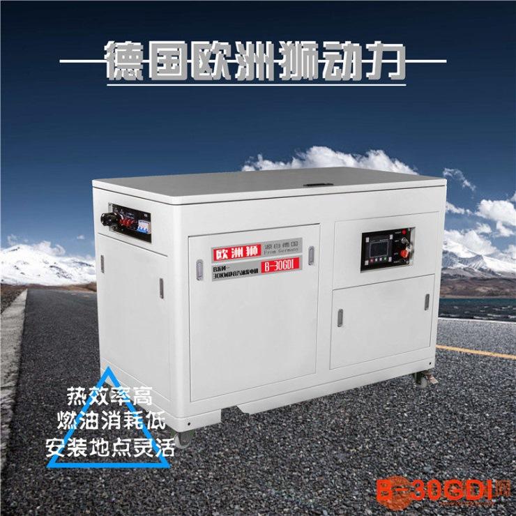 12kw汽油发电机欧洲狮动力