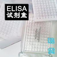 購買小鼠基質金屬蛋白酶7試劑盒(MMP-7免費代測)