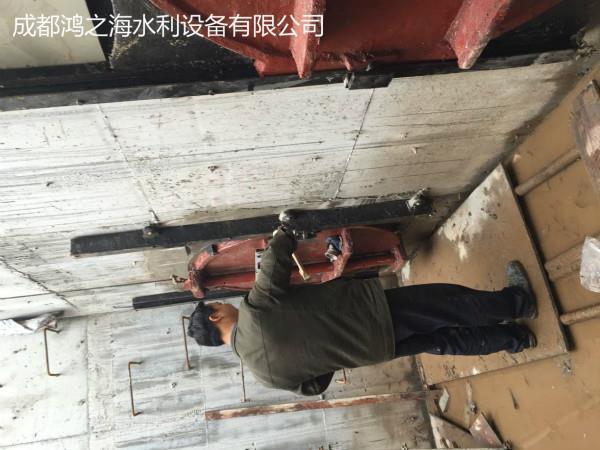 阿坝黑水县闸门-优质