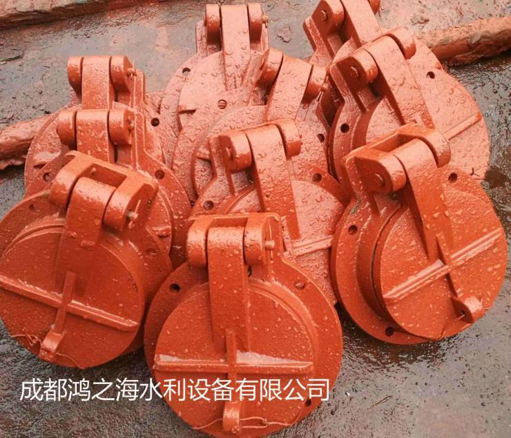 遂宁蓬溪县铸铁闸门-铸造辉煌
