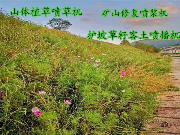 安徽省蕪湖市無為縣大型山體綠化客土噴播機批發