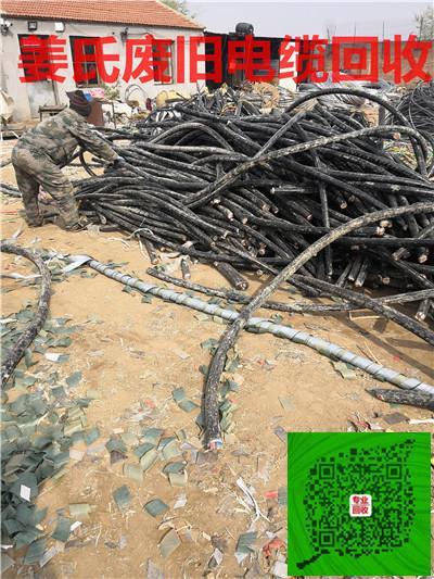 衡水回收电缆价格行情-欢迎来电