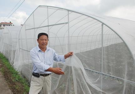 结实豆虫养殖网全新料豆丹防虫网60目加厚批发