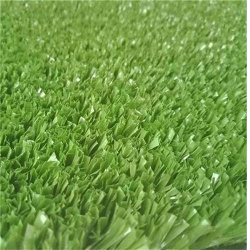 汕头地毯草坪垫子直销