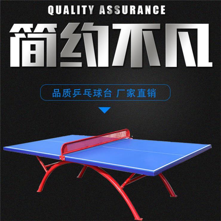 鹰潭 小彩虹乒乓球桌 品牌厂家