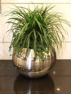 不锈钢金色花盆