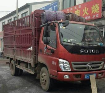 福建泉州到湘潭9米6高栏车回程车整车运输