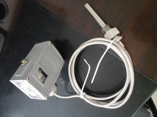 STEx防爆温度控制器厂家价格