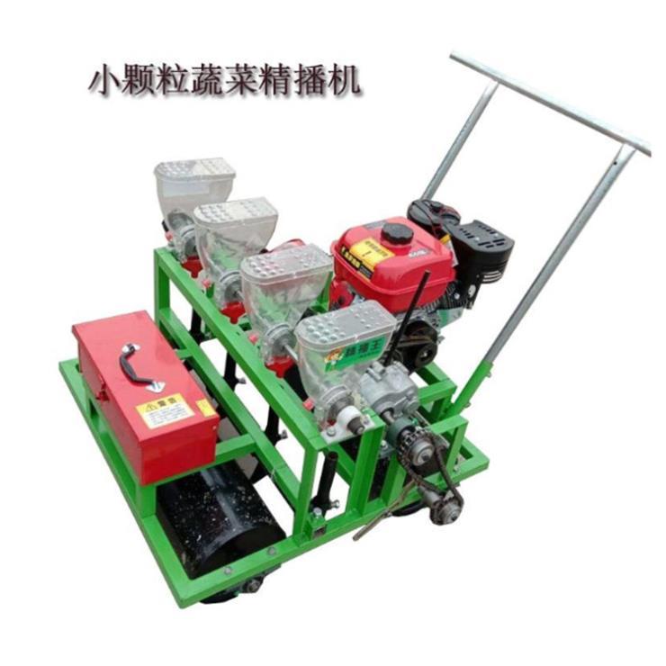 高效率點播種植機 大蔥高粱播種機