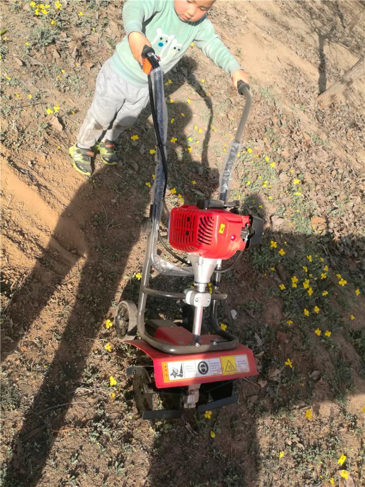 栽杆挖坑机打坑轻便快捷