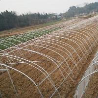 江蘇農豐溫室工程有限公司