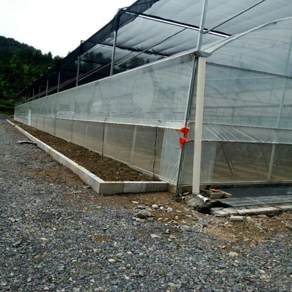 东湖区养猪大棚镀锌管新型设计合作