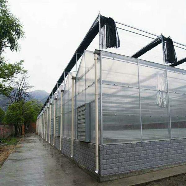懷安縣大棚管 大棚鋼管廠堅固耐用好溫室