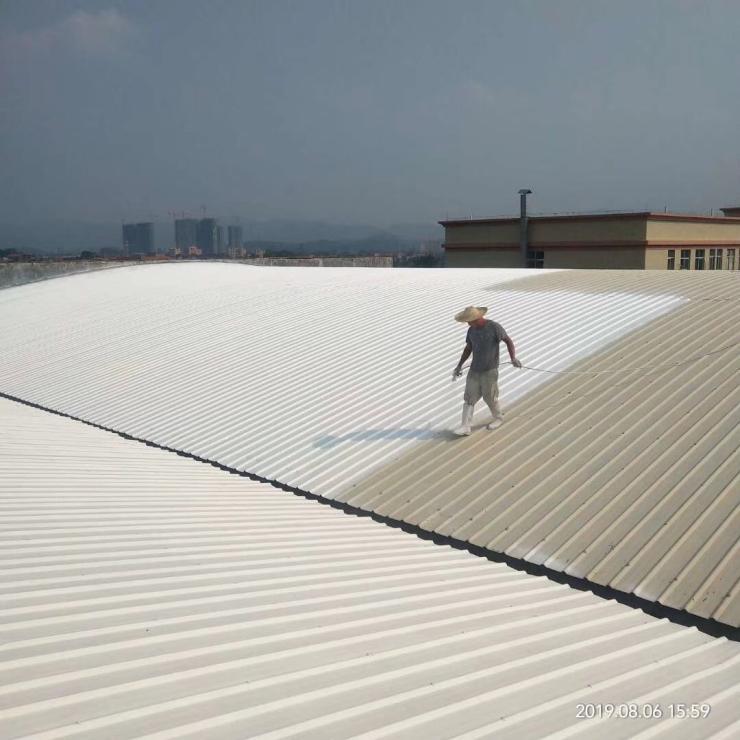 汕头外墙清洁装饰施工团队茶山采光棚防水堵漏,装修