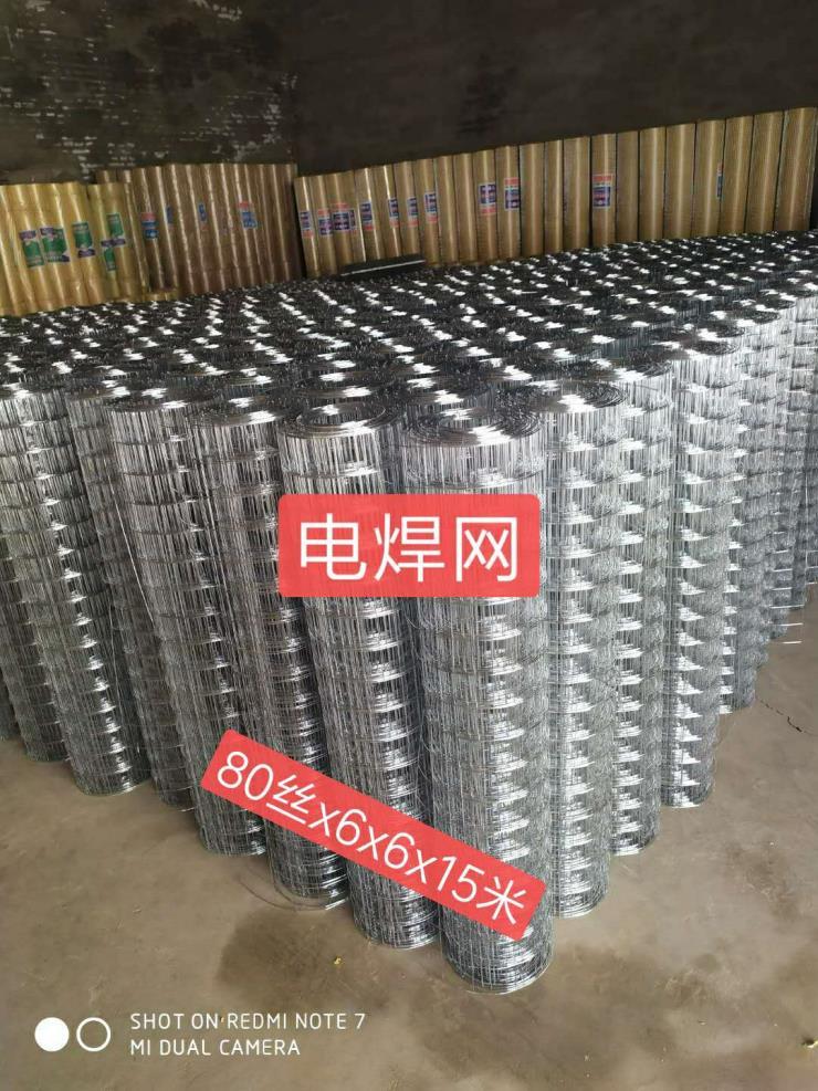 汕尾外墻保溫電焊網規格