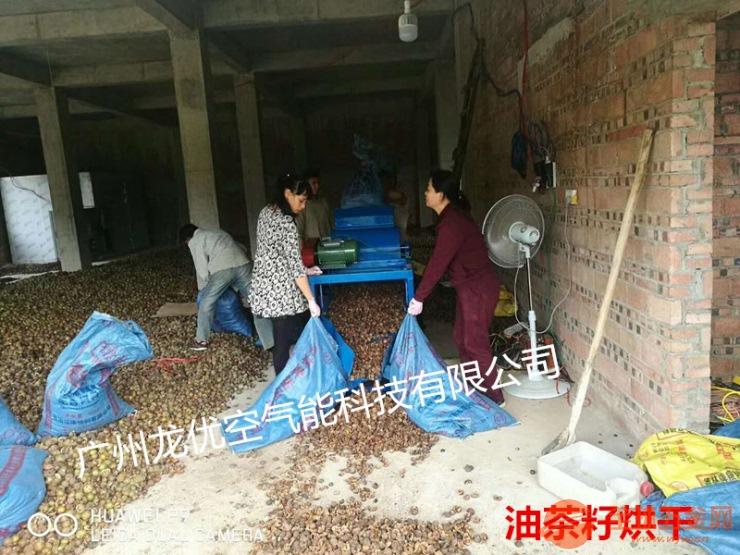 山茶籽烘干机厂家直销 高温热泵山茶籽烘干机设备 热风循环山茶籽干燥机