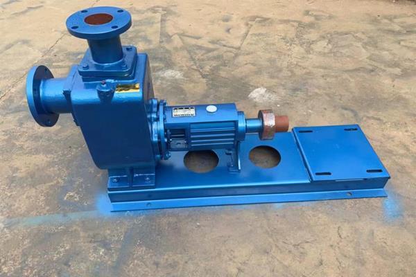 資興200ZX350-65自吸泵 工業清水自吸泵