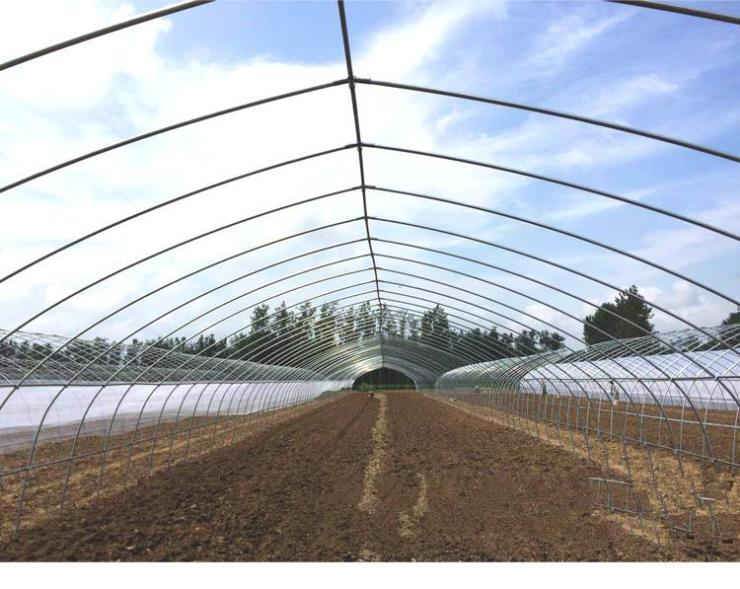 三明将乐县草莓大棚骨架出厂价格批量