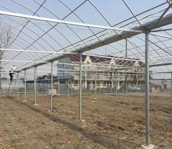 忻州定襄县草莓大棚骨架出厂价格批量