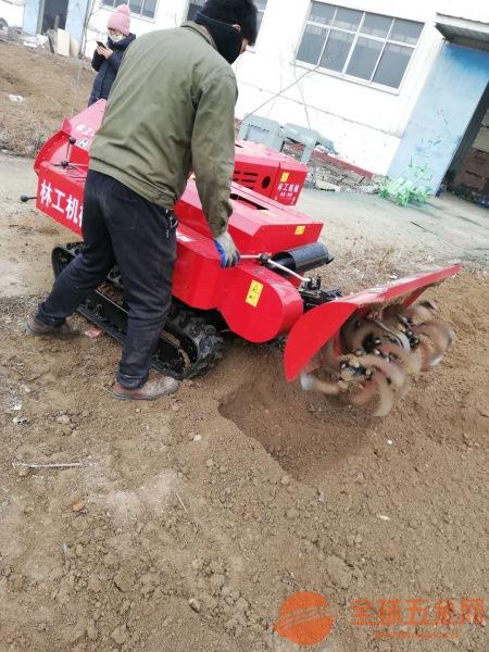 林工圖片蚌埠果園大鵬機器旋耕機設備