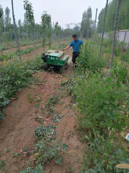 林工機械六安小型果園開溝機操作視頻