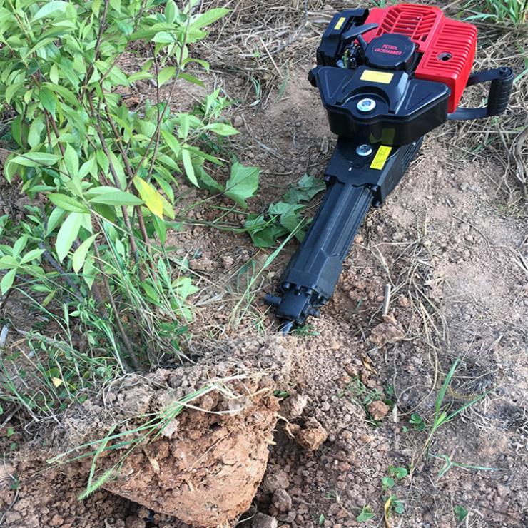 小型苗木斷根挖樹機