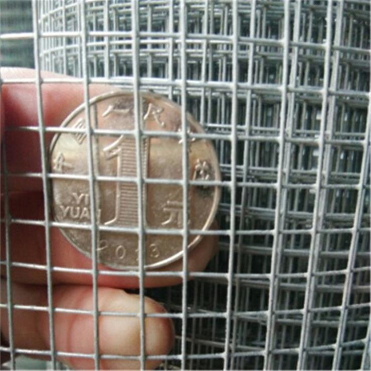 养殖丝网 不锈钢电焊网 镀锌电焊网 铁丝电焊网