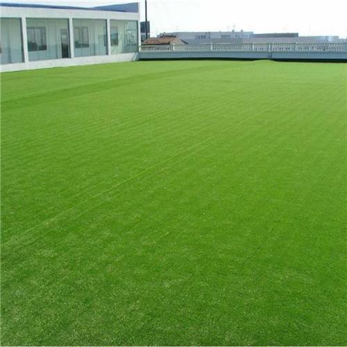 岳陽人造草坪環保門球草包含施工