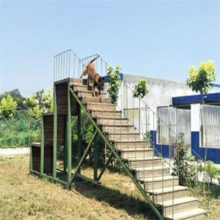 吉林户外警犬训练器材四级跳台源头工厂