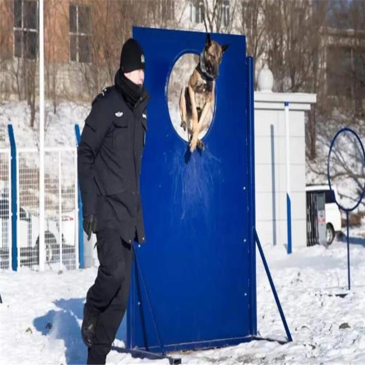 天津户外警犬体能训练器材你值得拥有