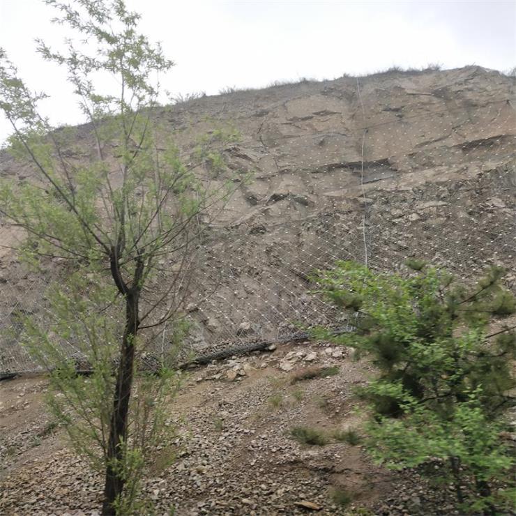 山體落石防護網.攔落石防護網.高邊坡攔石防護網