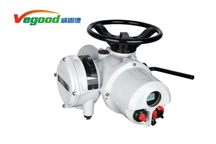 阀门电动执行器(罗托克机型)VGD10