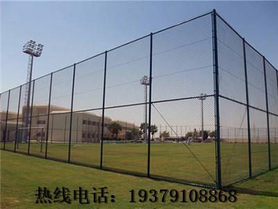 南昌市红谷滩新区体育场 小区篮球场围网 浸塑体育场围网