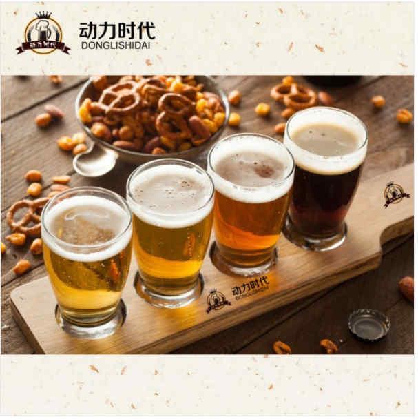 动力时代精酿啤酒生产设备